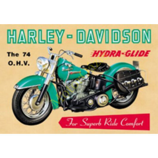 HARLEY DAVIDSON Hidra Glide
